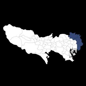 tokyo-area